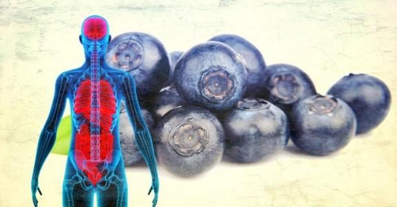 Hvis du spiser blåbær hver dag i en måned skjer DETTE med kroppen din! Jeg hadde ingen anelse!