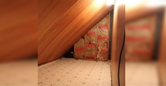Moren finner ett skummelt rom bak sønnens kommode. Hun går inn og finner DETTE…