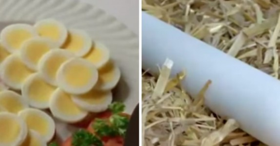 Har du noengang sett lange egg? Dette er hvordan de lages. WOW!