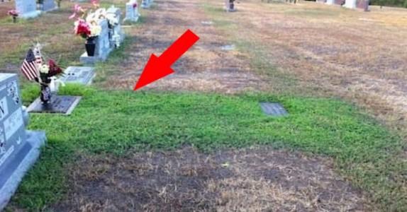Moren lurer på hvorfor sønnens grav plutselig er grønn. Når hun finner ut årsaken, kommer tårene.