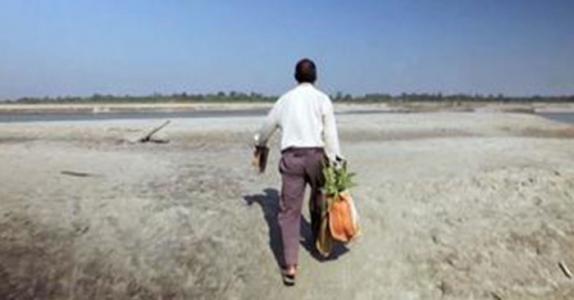 Mannen planter et tre på samme sted hver dag – 37 år senere blir verden forbløffet over resultatet!