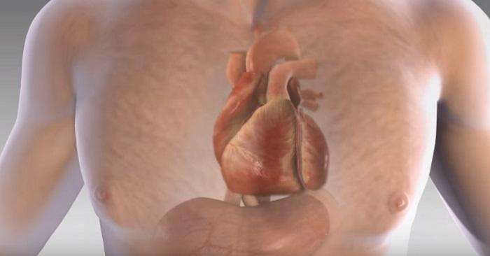 nervøst hjerte symptomer