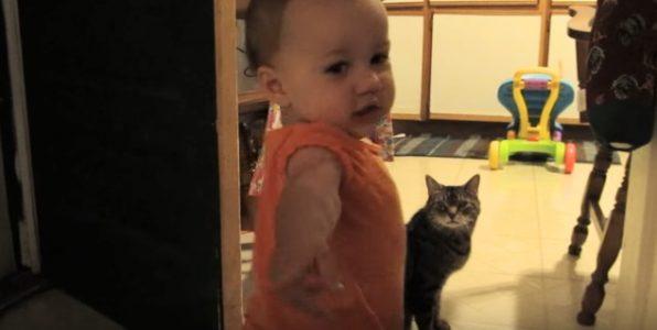 Pappaen ser katten og datteren på kjøkkenet. Da tar han opp kameraet, og begynner å filme!