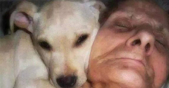 70-åringen ligger i koma i en måned. Men det hun sier når hun VÅKNER, overrasker alle!