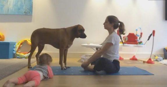 Moren tar frem yogamatten.  Men det som skjer sekunder senere? Jeg ler så tårene triller!
