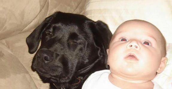 Søsteren ADVARER mammaen mot å beholde hunden når hun får barn. 10 år senere angrer hun!