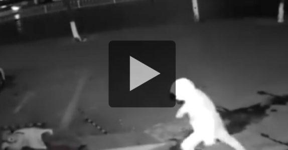 Det hysteriske innbruddsforsøket går nå verden rundt. Se videoen av verdens dummeste tyver!
