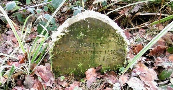 Mannen finner en gammel gravsten midt i skogen. Når han ser hva som står på den, triller tårene!
