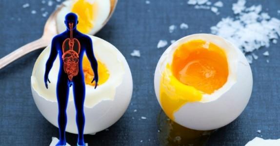 Forskning: Dette skjer med kroppen om du spiser egg hver dag!