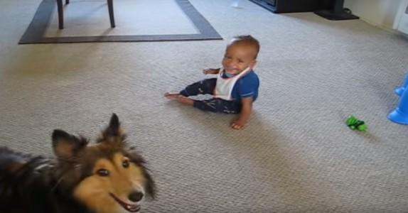 Ingen trodde hunden og babyen gjorde dette, så familien tok fram kameraet og filmet det. Fantastisk!