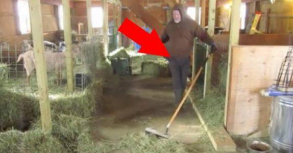 Han feier gulvet i stallen til geitene. Men det som skjer på 0:35? Jeg ler så tårene triller!