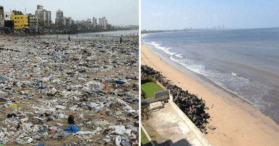 Denne massive ryddeaksjonen på stranda brakte skilpadder tilbake. For første gang på 20 år!